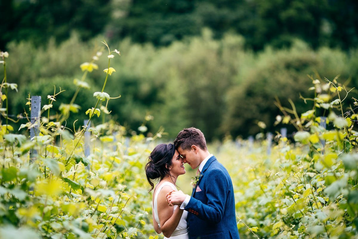 Sweet moment between bride and groom at The Mount Vineyard Kent in amongst the vines